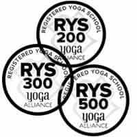 What are RYS, RYS 200, RYS 300 and RYS 500